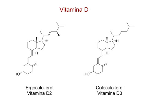 Dónde encontrar Vitamina D