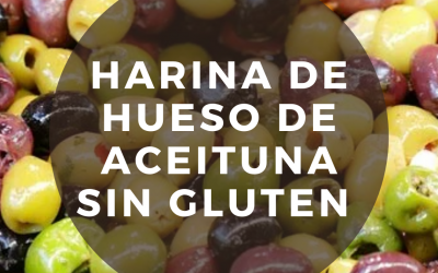 Harina de hueso de aceituna sin gluten